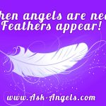 Angel Feathers. What Is The Meaning of Finding Feathers?