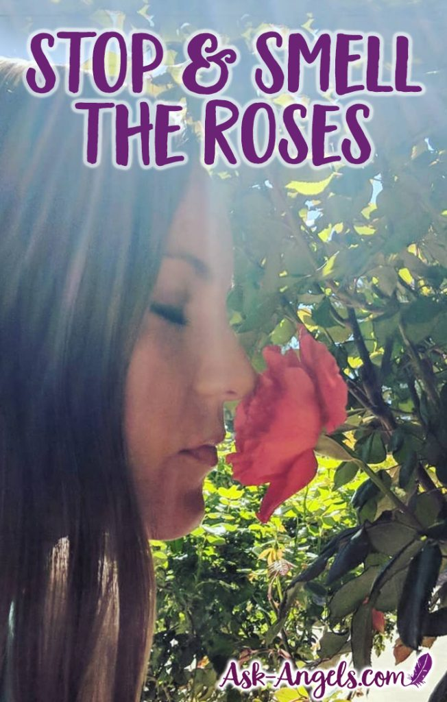 Take time to Stop and Smell the Roses! Learn the deeper meaning of spiritual significance of this quote... It's not only about flowers, but also about being fully present and tuned into love. #inspiration