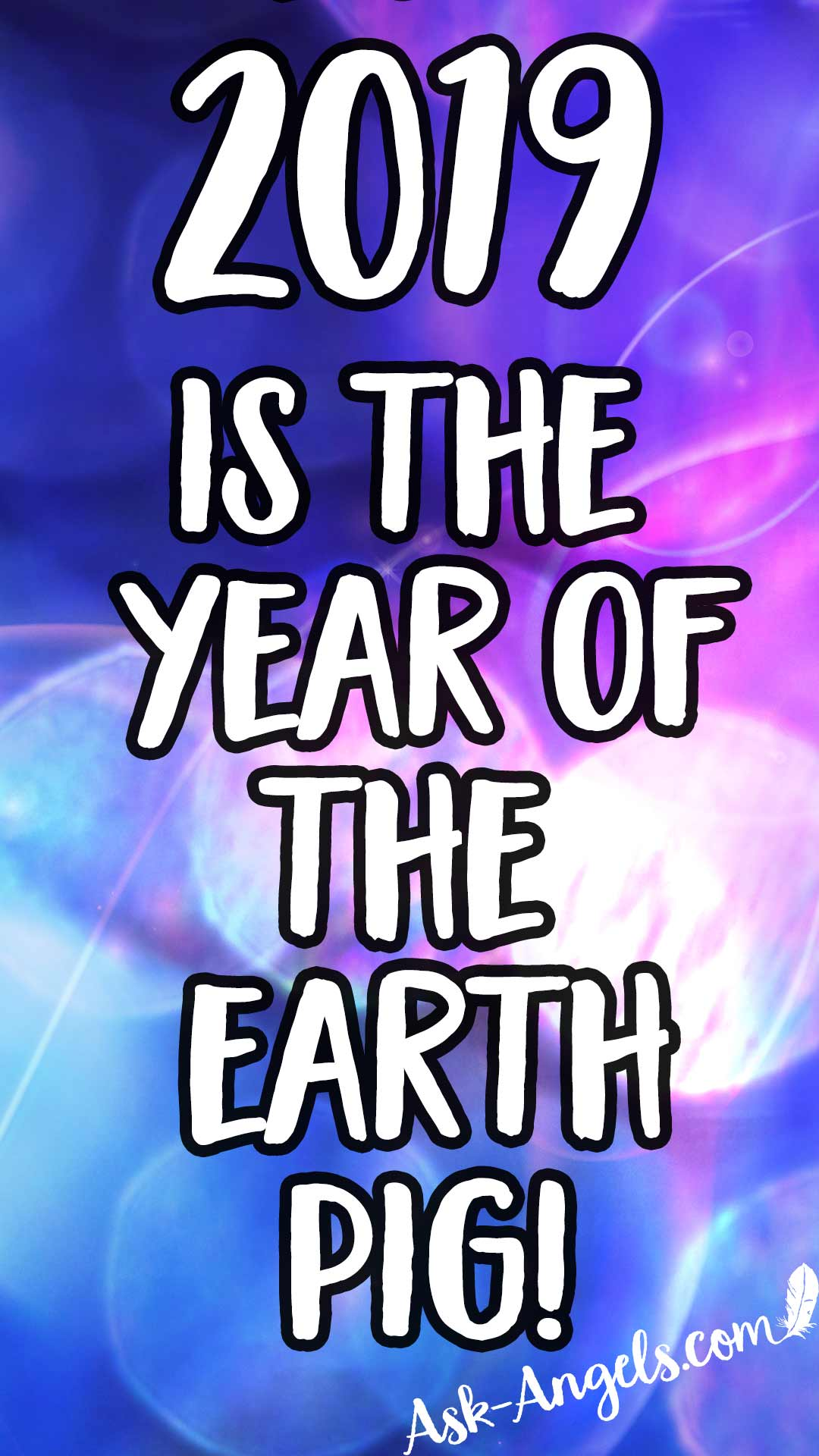 2019 Is the Year of the Earth Pig
