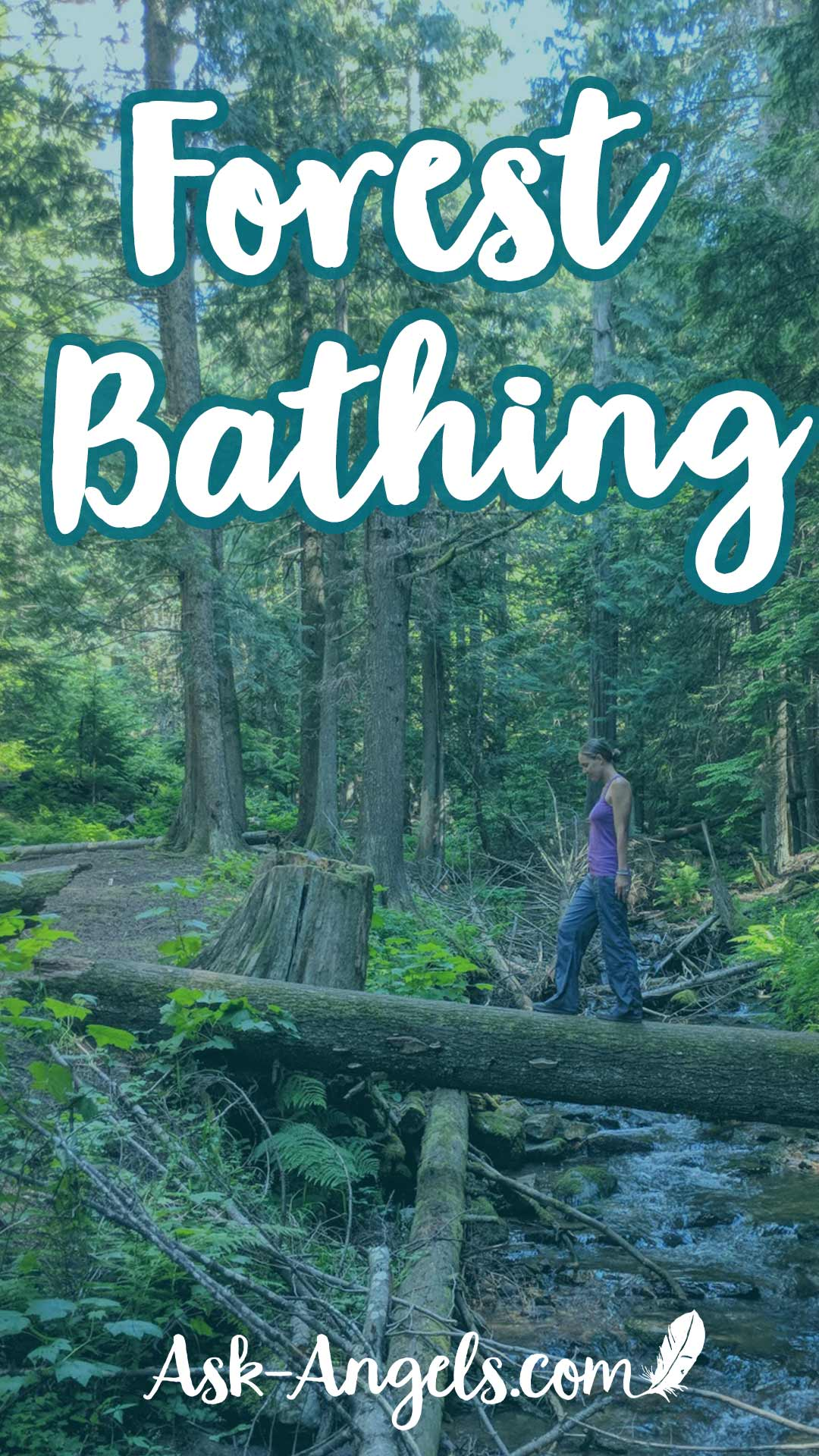 Forest Bathing – A Powerful Energetic Reset!