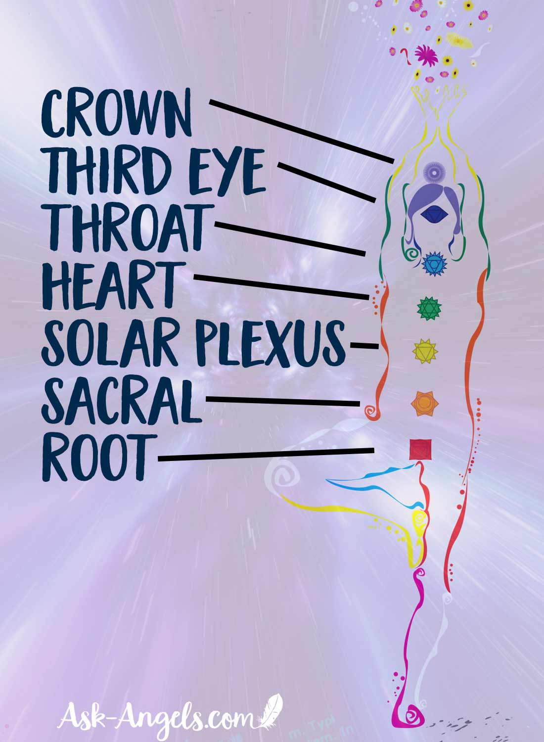 The 7 Chakras Within the Physical Body